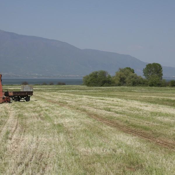 Ολοκληρωμένη εκμετάλλευση αγροτικής παραγωγής με ταυτόχρονη διαχείριση ενέργειας και περιβάλλοντος