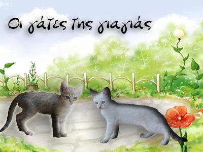 Οι γάτες της γιαγιάς.