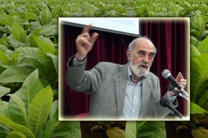 Κοινή αγροτική πολιτική (Α'): Οι επιδοτήσεις, και οι επιπτώσεις τους σε συγκεκριμένες ελληνικές καλλιέργειες. Η περίπτωση του καπνού