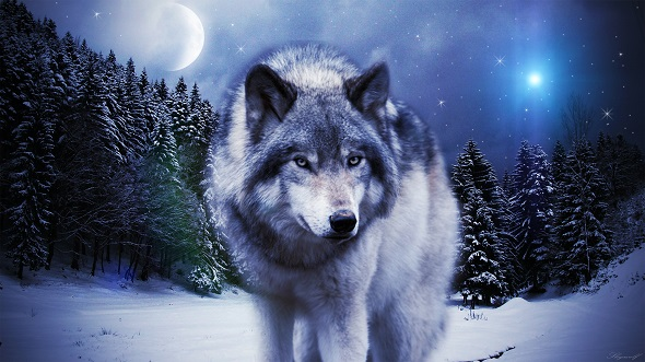 Πηγή:http://sky-x-wolf.deviantart.com/