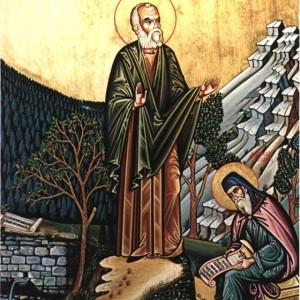 Ευγένιος Γιαννούλης ο Αιτωλός. Κληρικός, διδάσκαλος του Γένους. Εικόνα του Β. Κοκοράκη (Αθήνα, Συλλογή Π.Κ. Βλάχου).