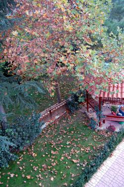 autumn_mesa