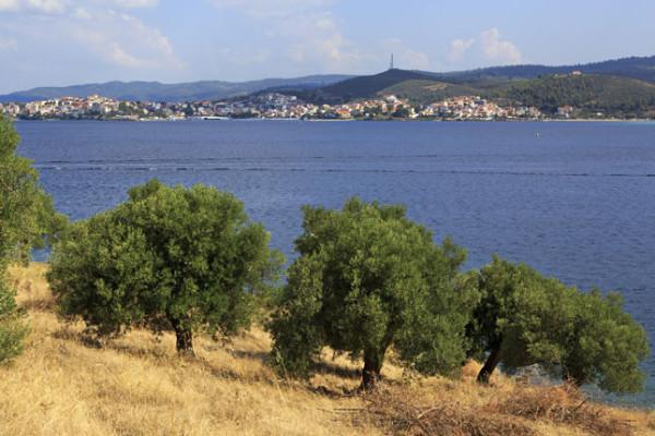Επάρκεια νερού, ποσότητα και ποιότητα αγροτικών προϊόντων