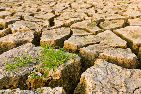 Κλίμα και κλιματική αλλαγή: τι μας επιφυλάσσει το μέλλον;