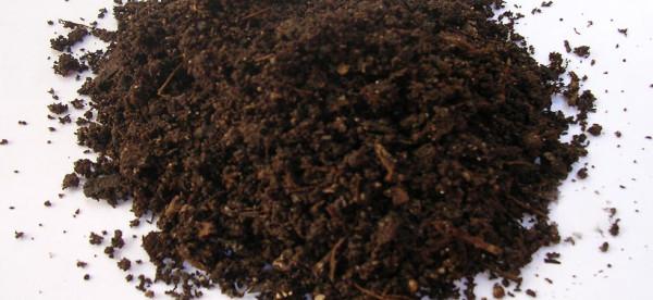 kompost_UP
