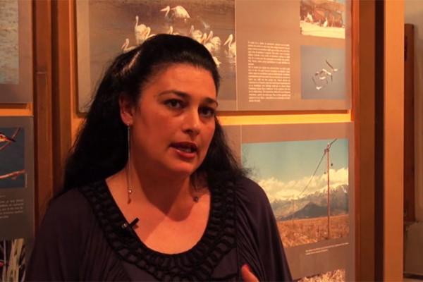 Πρέσπες: Φυσικό Περιβάλλον και Αξιοθέατα (1ο μέρος)