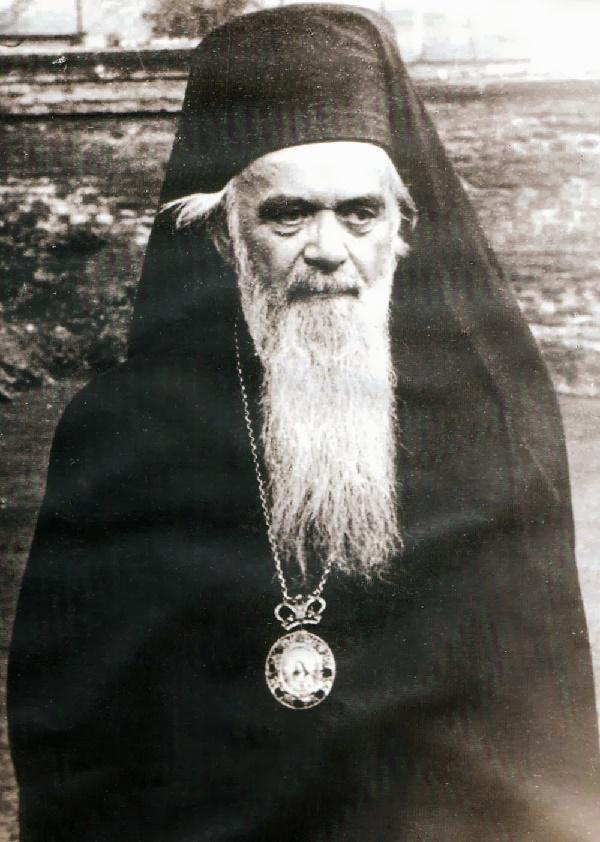 NikoVelimirovic2