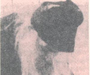 Ιερομόναχος Ευγένιος Διονυσιάτης (1875 - 10 Δεκεμβρίου 1961)