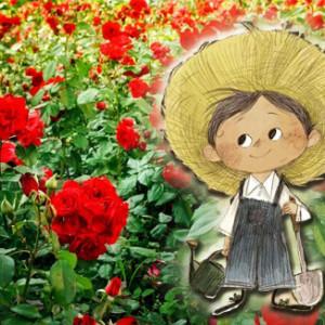 Το ανέγγιχτο τριαντάφυλλο (Ι)