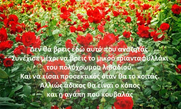 triantafyllo_5_Poem2