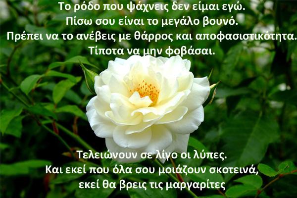 triantafyllo_7_Poem3