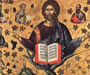 Η συμβολική δύναμη της Αμπέλου στην Αγία Γραφή