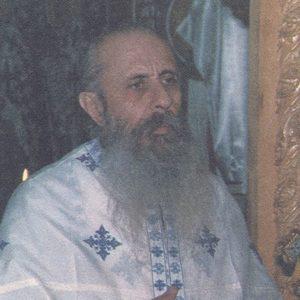 π. Επιφάνιος Θεοδωρόπουλος († 10 Νοεμβρίου), μια ασκητική και θεολογική μορφή