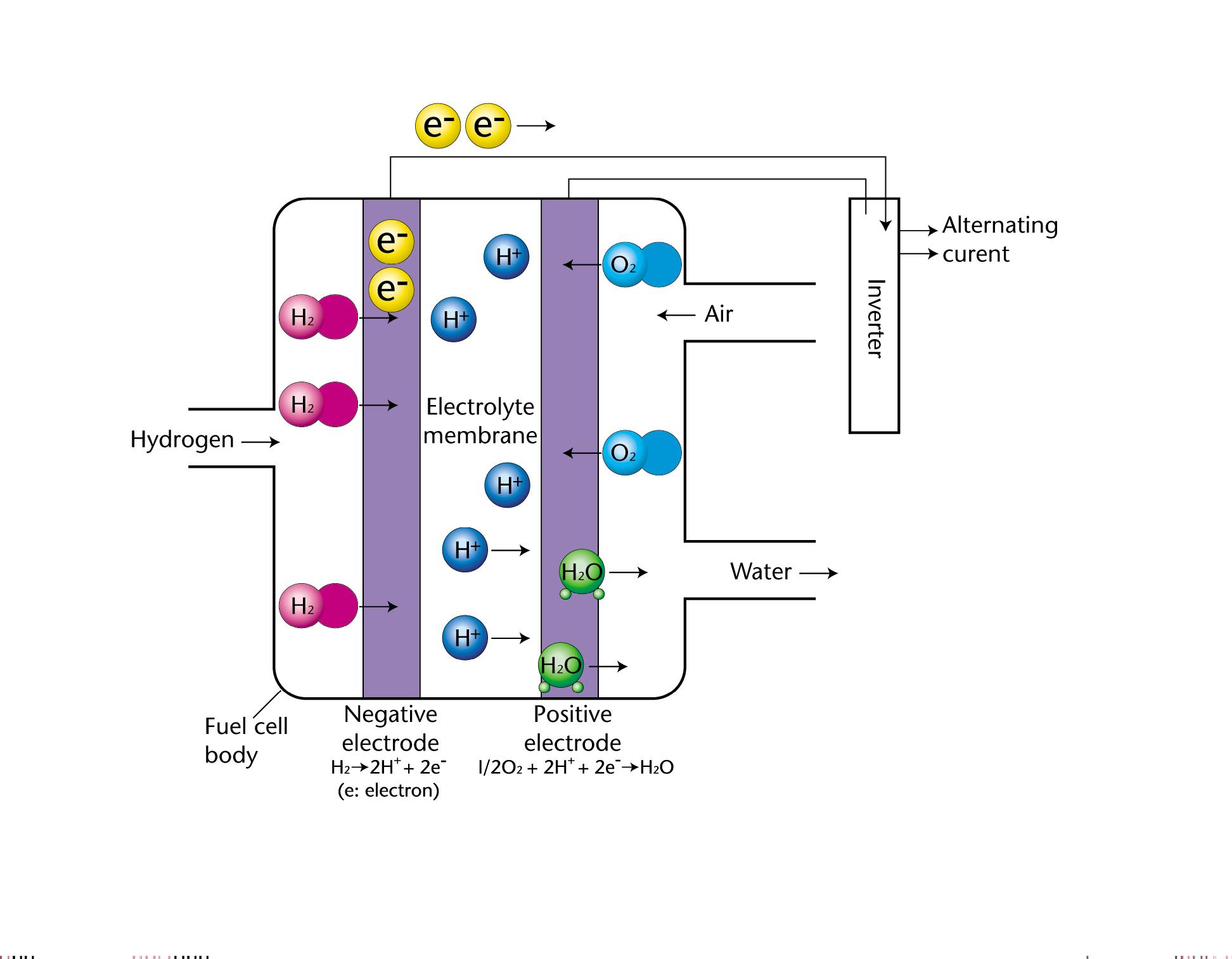 fuel cell EG_41