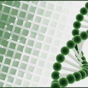 Η σύγκρουση της αρχής της αυτονομίας με τη βιοηθική και ο ιατρικός πατερναλισμός