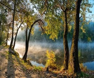 Η φύση ως δημόσιο αγαθό σε αρχαία και σύγχρονη σκέψη