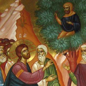 Η νοσταλγία, Κυριακή του Ζακχαίου (Λουκ.19, 1—10)