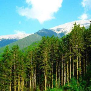 Ο εκκλησιαστικός λόγος για το οικολογικό ζήτημα και τη 1η Σεπτεμβρίου, ως ημέρα προστασίας του περιβάλλοντος