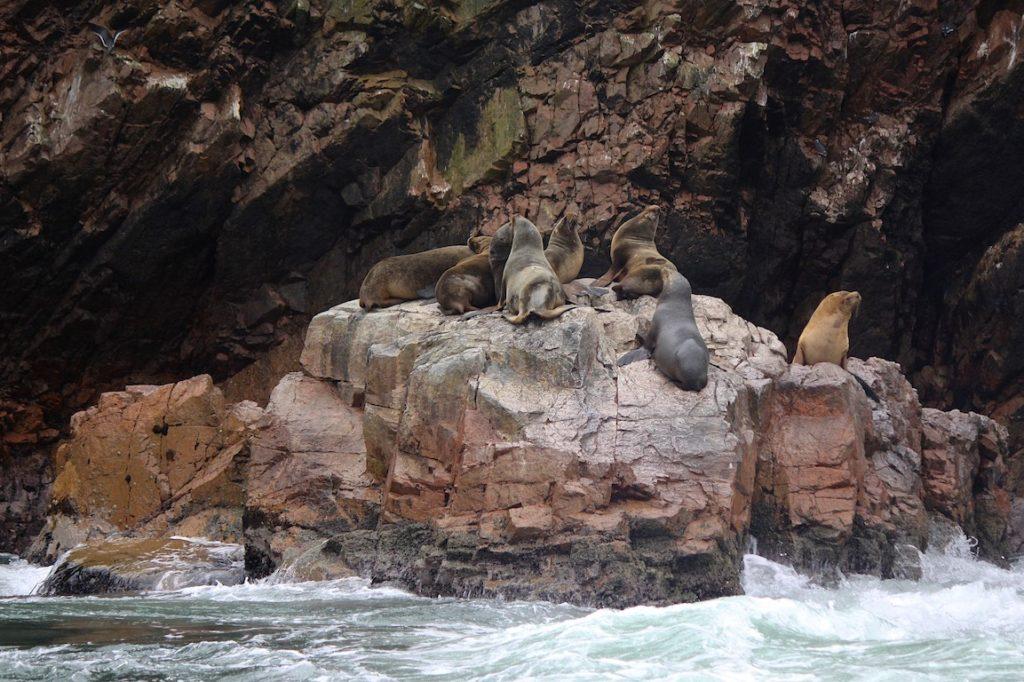 Του Κόσμου τα Γυρίσματα – Περού, Νησιά Μπαγιέστας