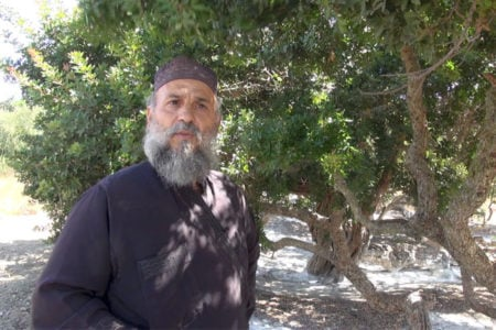 Μαστίχα: Το χάρισμα του αγ. Ισιδώρου για τη Χίο