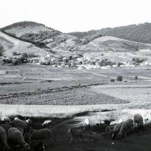 Μαρτυρίες από την κτηνοτροφική ζωή των Βλάχων, καθ'οδόν για τα χειμαδιά