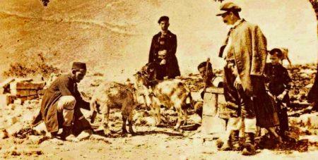 Μετακινήσεις ανθρώπων και ζώων στα πλαίσια του ημι-νομαδισμού