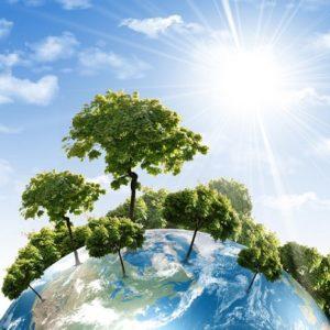 Κινήματα Οικολογίας. Μία θεολογική και ποιμαντική προσέγγιση