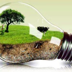 Καπιταλισμός και οικολογία