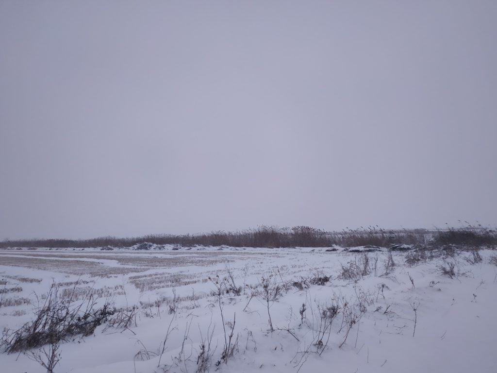 Στο δέλτα Λουδία και Αλιάκμονα με τον χιονιά παραμονή Θεοφανίων