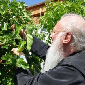 Ο Οικουμενικός Πατριάρχης για την προστασία του περιβάλλοντος και την οικολογική κρίση