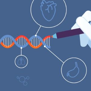 Γονίδιο θεϊκής προέλευσης. Γονιδίωμα: Άνθρωπος ανταλλακτικό ή αντικείμενο έρευνας και πειραματισμού