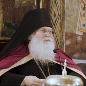 Γέρων Εφραίμ Βατοπαιδινός: ομιλία μετά την Παν-αγιορειτική Αγρυπνία υπέρ απαλλαγής από την πανδημία