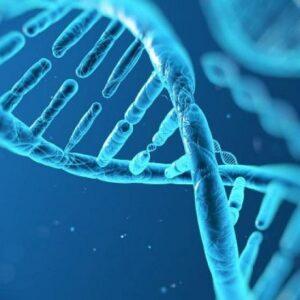 Προληπτική γενετική ιατρική και μια βιοηθική θεώρησή της