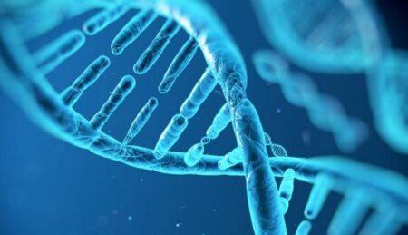 Γενετικά και βιομετρικά δεδομένα