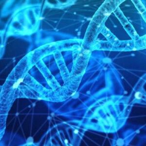 Αναπαραγωγική κλωνοποίηση: ηθικοί και θεολογικοί προβληματισμοί